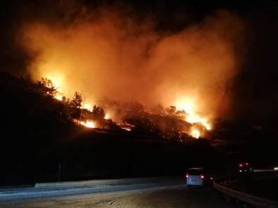 Mersin'de Orman Yangını Açıklaması 3 Hektar Kızılçam Ormanı Zarar Gördü