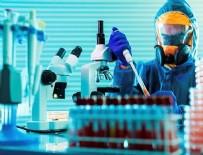 ORMAN BAKANI - Koronavirüse karşı anti-serum! Tarih belli oldu!