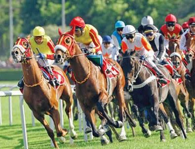 At yarışları yeniden başlıyor!