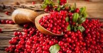 POTASYUM - Lokman Hekim'in önerdiği besinler