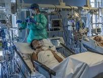 HOLLANDA - Virüsle mücadele Türkiye'nin konumu!