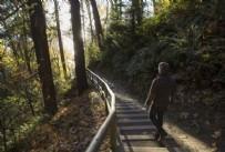 DERMATOLOJİ - Korona sonrası doğa gezileri trend ama Lyme hastalığı riskine dikkat