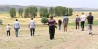 AFGANISTAN - Çorum'da 'aslan' korkusu! Tüfek ve dürbünlerle arıyorlar...