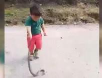 Şoke eden olay! Çocuğu yılan ile oynattı!