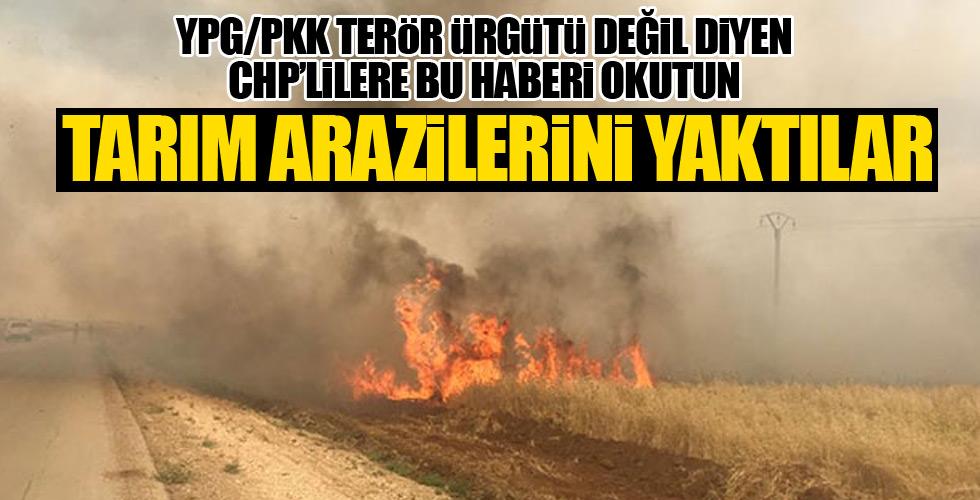 Terör Örgütü YPG/PKK sivillerin tarlalarını yaktı!
