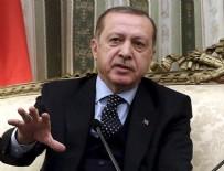 TARIM ARAZİSİ - Başkan Erdoğan müjdeyi verdi...