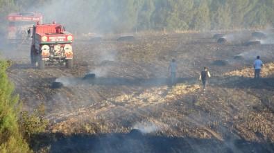 Uşak'ta Korkutan Tarla Yangını