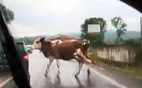 GÜVENLİK KAMERASI - Korkunç kaza kamerada!