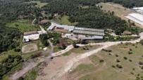 BASIN TOPLANTISI - İYİ Partili Türkkan'ın kaçak çiftlik ve fabrikası görüntülendi!