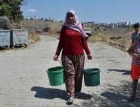 HAYVANCILIK - İzmir'in merkezindeki susuz mahalleden CHP'li belediyeye tepki!