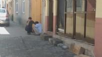 DEVLET HASTANESİ - Vahşetin böylesi görülmedi!