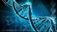 MÜHENDISLIK - Bilim dünyasında bir ilk! DNA'nın yapısını değiştirdiler