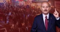 HAYVAN - İçişleri Bakanı Süleyman Soylu duyurdu: Çevre, Doğa, Hayvan Koruma Şube Müdürlüğü kuruldu