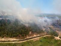 ANTALYA - Antalya'da büyük orman yangını!