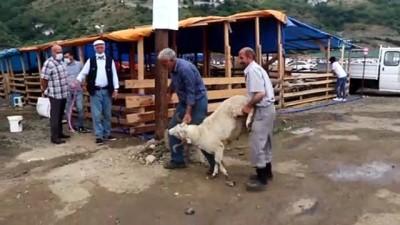 Trabzon Ve Giresun'da Kurban Pazarlarında Yoğunluk