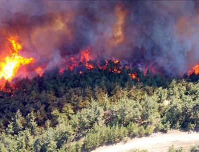 Bakan Pakdemirli'den Gelibolu'daki orman yangınına ilişkin açıklama