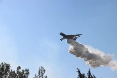 İzmir'de Dört Noktada Çıkan Yangınlara Müdahale Devam Ediyor