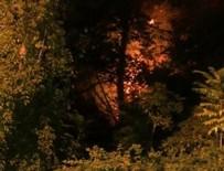 EĞİMLİ ARAZİ - Emirgan korusu yangınında yeni detaylar ortaya çıktı!