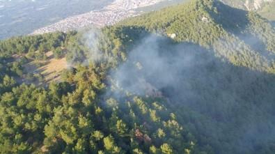 Hızla Kontrol Altına Alınan Orman Yangınında 2 Dekarlık Alan Zarar Gördü