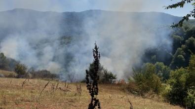 Bartın'da Otluk Alanda Çıkan Yangın Helikopterle Söndürüldü