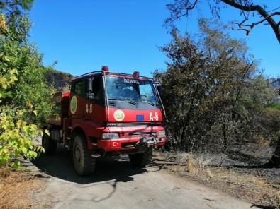 Dün Küle Dönen Ormanlık Alanda Tekrardan Yangın İhbarı Ekipleri Harekete Geçirdi