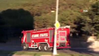 Maltepe'de Ormanlık Alanda Çıkan Yangın Söndürüldü