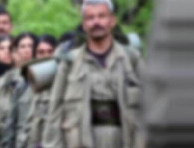 Teröristbaşı Karayılan çaresiz kalıp itiraf etti!