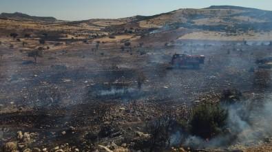İslahiye'de Tarım Alanında Yangın Çıktı