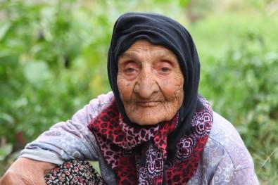 Limak Enerji 30 Ağustos Zafer Bayramı'nı Zaferin Tanığı Fatma Nine İle Kutladı
