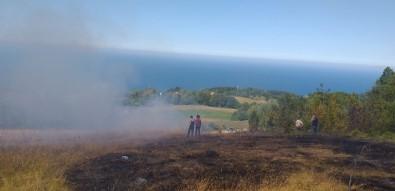 Türkeli'de Tarla Yangını Kontrol Altına Alındı