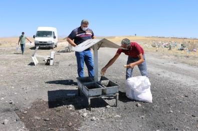 Erciş Belediyesi Sıcaktan Bunalan Hayvanları Unutmadı