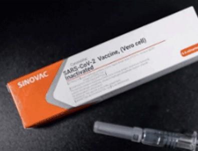 Beklenen haber geldi! Türkiye'deki aşı gelişmesini resmen duyurdular