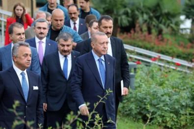 Erdoğan ve Bakan Koca'ya komik dava!