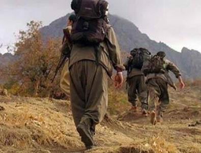 PKK'nın sanal teröristi itiraf etti!