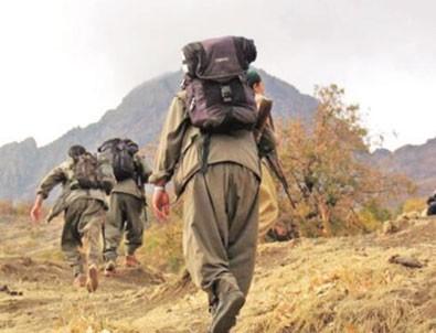 PKK'nın sözde üst düzey görevlisi öldürüldü!