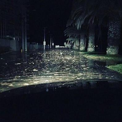 Depremden Sonra Deniz Suyu Yükseldi, Otelleri Su Bastı