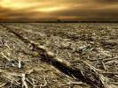 Suriye toprakları geri verecek