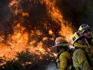 Orman yangını Los Angeles'ı tehdit ediyor