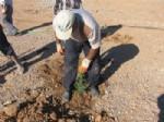 Mihalıççık'ta Ağaçlandırma Çalışmaları