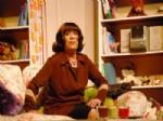 SEFA ZENGİN - Bitlis Sanatçı Akınına Uğradı