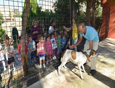 Çiğli'de Miniklere Hayvan Sevgisi Aşılanıyor