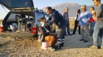 Isparta-Afyonkarahisar Sınırında Trafik Kazası Açıklaması 4 Yaralı