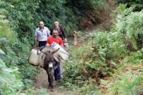 Evlerine Eşeklerle Su Taşıyorlar