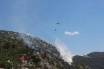 Isparta'da Orman Yangını