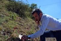 DEPREM TAHMİNİ - Marmara'nın Güneyine Deprem Uyarısı