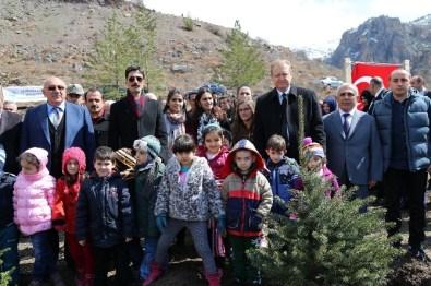 Cebeli Köyüne 10 Bin Fidanlık Yeni Orman