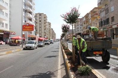 Bağlar Belediyesi'nin Yeşillendirme Çalışmaları Devam Ediyor