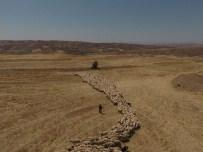 Kayseri'de Koyun Ve Keçilerde Elektronik Kimliklendirme Çalışmaları Hızla Devam Ediyor