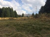 KAMP GÜNLÜĞÜ - Otostopla Uludağ'a Kamp Yapmaya Geliyorlar