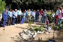 TUNCEL KURTİZ - Tuncel Kurtiz Ölümünün 3. Yılında Mezarı Başında Anıldı